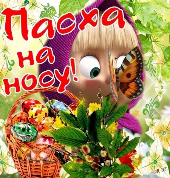 Прикольные картинки на праздник Пасху - C Пасхой поздравительные картинки