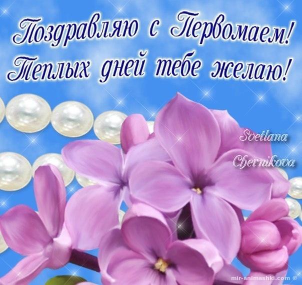 Поздравление на 1 мая в картинках - Поздравления с 1 мая поздравительные картинки