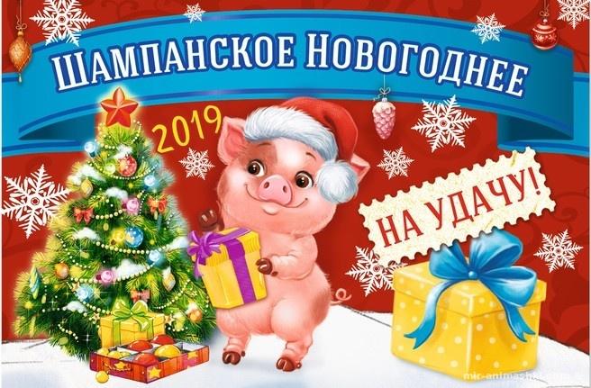 С наступающим Новым 2019 годом! - C наступающим новым годом 2019 поздравительные картинки