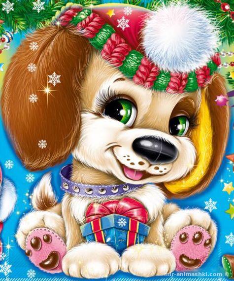 Прощаю все, новогодние открытки собака