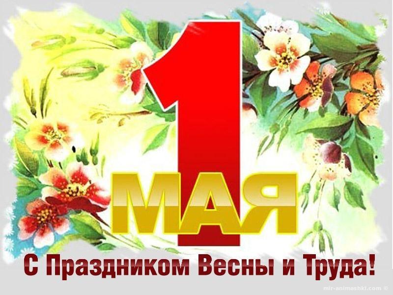 Открытки с днем Весны и Труда - Поздравления с 1 мая поздравительные картинки