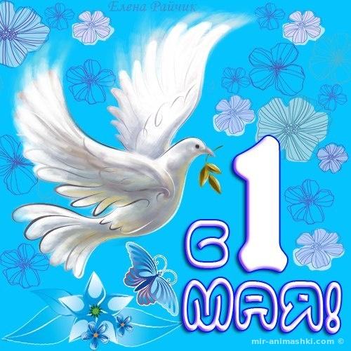 Скачать бесплатные открытки с 1 мая - Поздравления с 1 мая поздравительные картинки