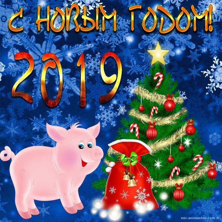 Открытка на год свиньи с прикольным рисунком поросенка - C Новым годом 2019 поздравительные картинки