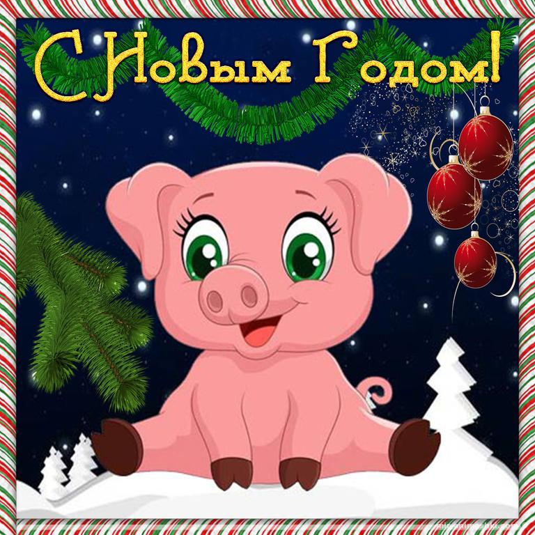 Красивая открытка со свинкой на Новый год 2019 - C Новым годом 2019 поздравительные картинки
