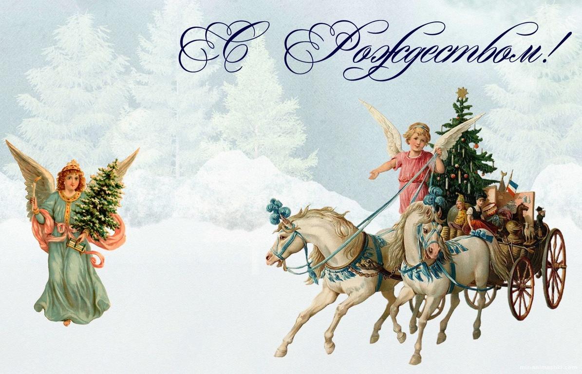 Ангелы на лошадках в заснеженном лесу - C Рождеством Христовым поздравительные картинки