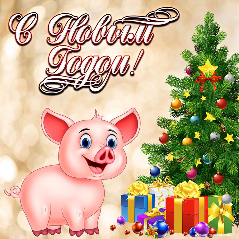 Прикольная открытка на новый год Свиньи - C Новым годом 2019 поздравительные картинки