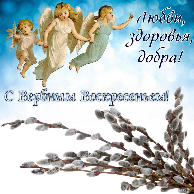 Картинки смешные, открытка с поздравлением с вербным воскресением