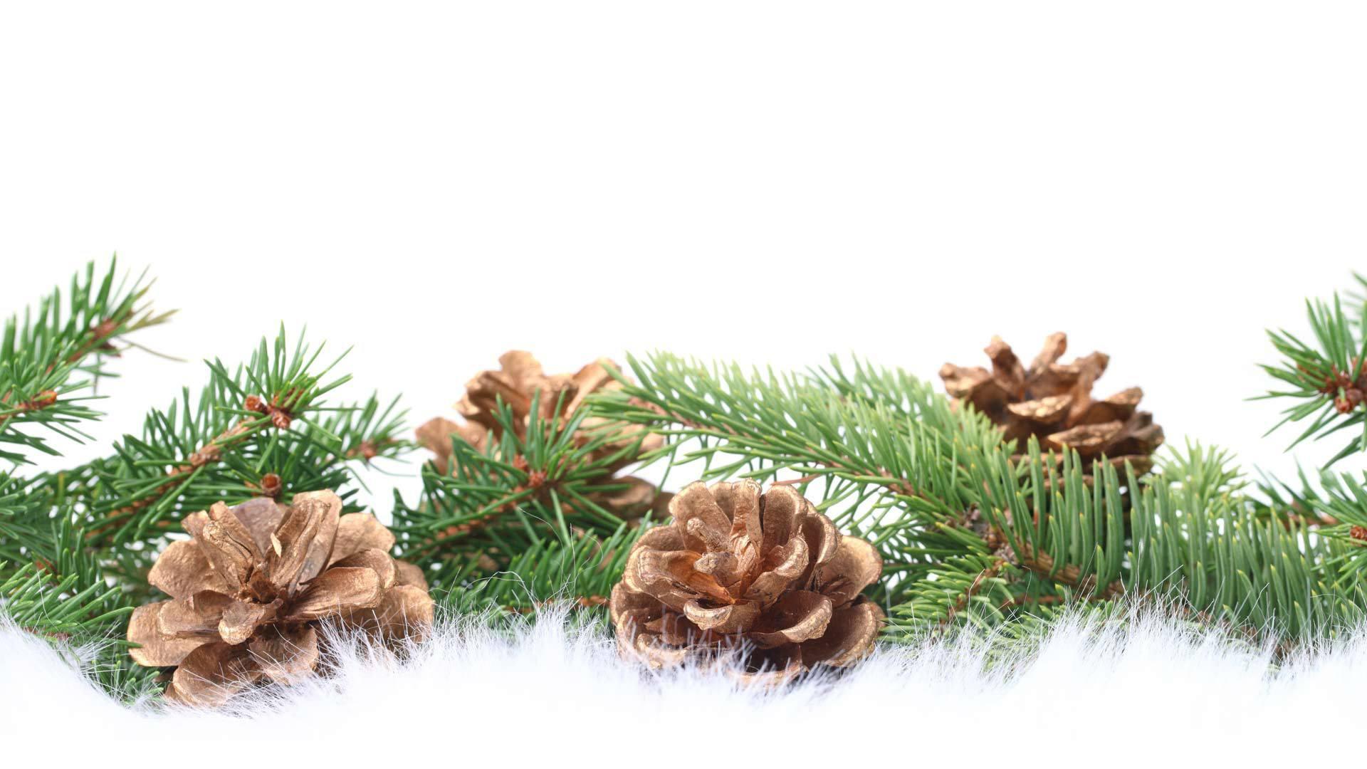 еловая ветка открытка новый год нейл-арта часто используют