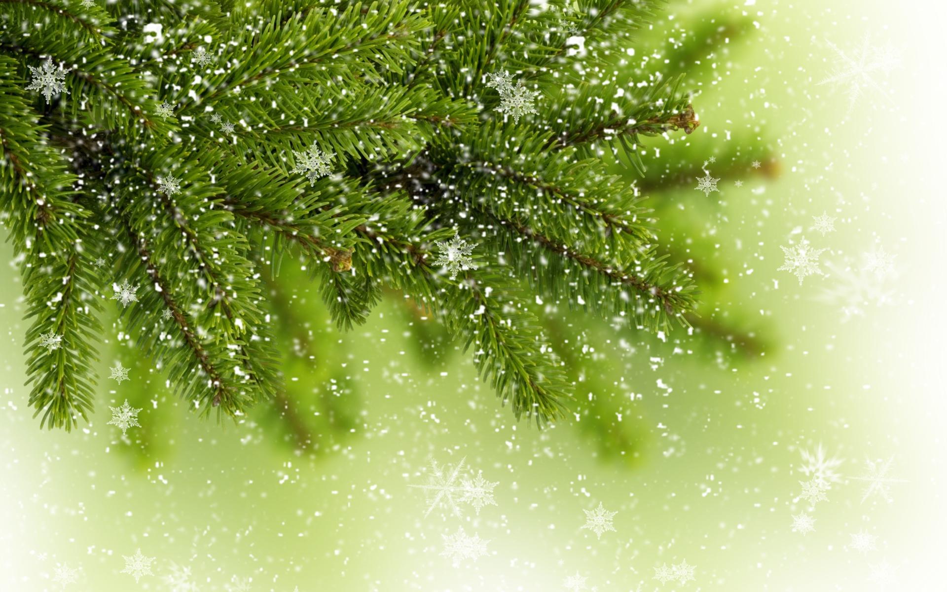 Снежинки на ветке елки - C Рождеством Христовым поздравительные картинки