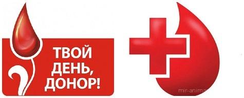 День донора в России - 20 апреля 2018