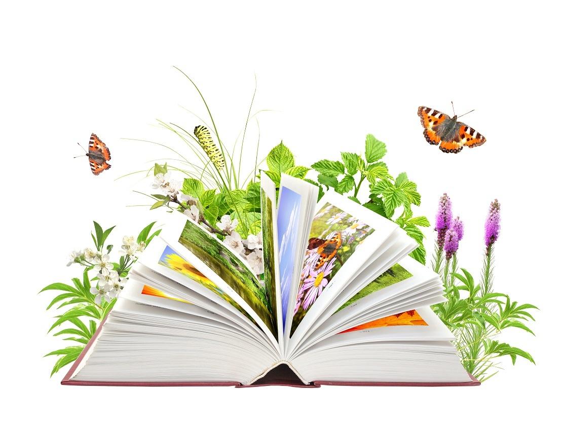 День экологических знаний - 15 апреля 2019