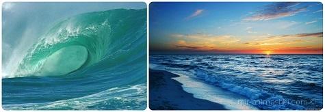 Всемирный день океанов - 8 июня 2018