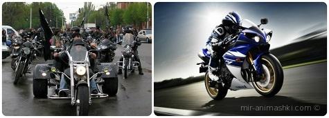 Всемирный день мотоциклиста - 18 июня 2018