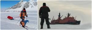 День полярника