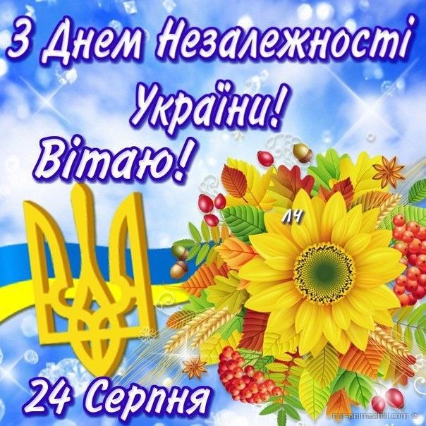 Поздравление с независимостью украины 12