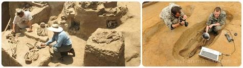 День археолога - 15 августа 2018
