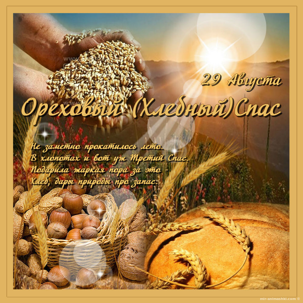 Ореховый хлебный спас стихи
