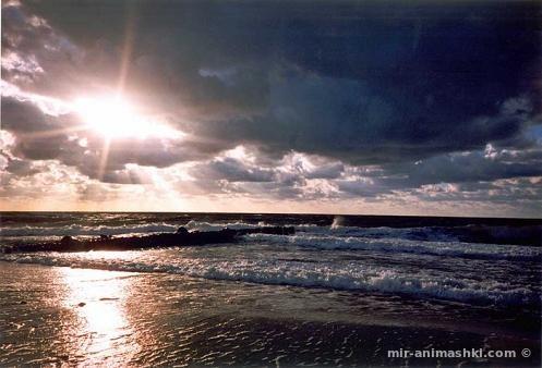 Всемирный день моря - 29 сентября