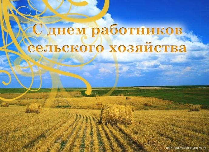 День работников сельского хозяйства Украины - 20 ноября 2017