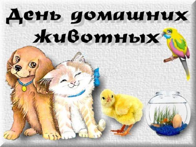 Всемирный день домашних животных - 30 ноября 2018