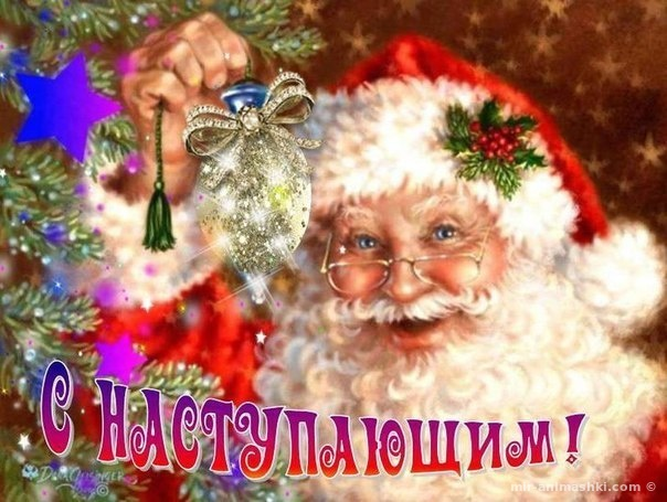 Поздравляем с наступающим Новым 2019 годом Свиньи - 31 декабря 2018