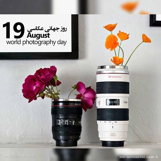 Всемирный день фотографии - 19 июня 2019
