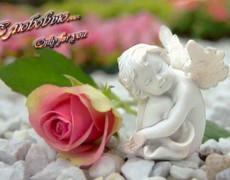 Ангел и розы