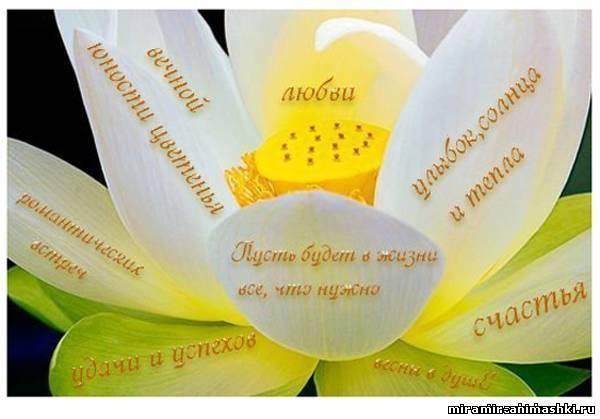 Красивые пожелание стихами другу