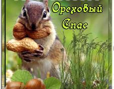 Ореховый Спас - Белочка с орехами