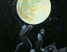 Лунный кот