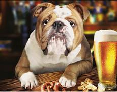 Говорящий пёс