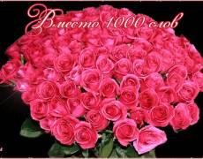 Вместо 1000 слов огромный букет розы