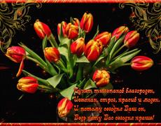 Букет тюльпанов благороден