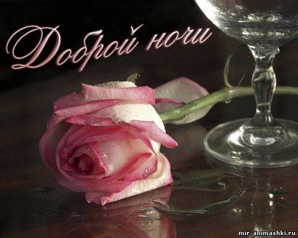 роза с бокалом - Спокойной ночи