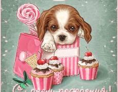 Гиф открытка с днём рождения для девочки