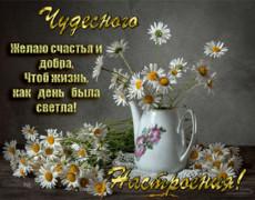 Желаю счастья и добра